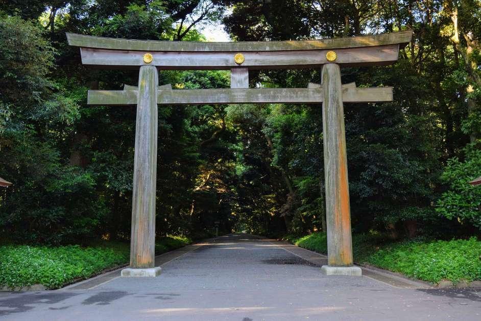 Torii at Meiji Shrine