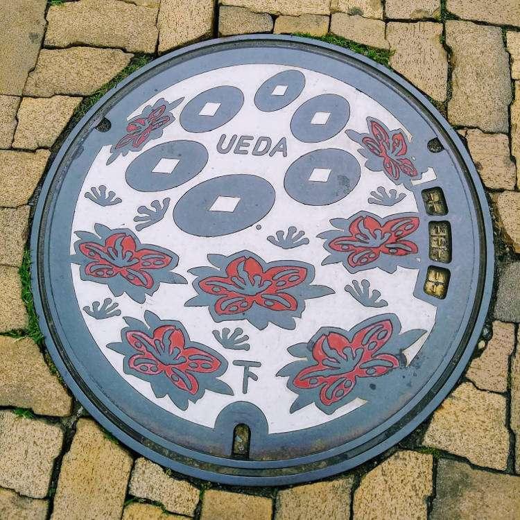 Udea Manhole Cover