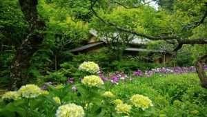 Kamakura Divorce Shelter