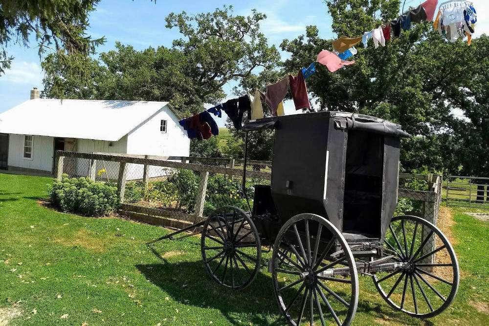 Amish Buggy Minnesota