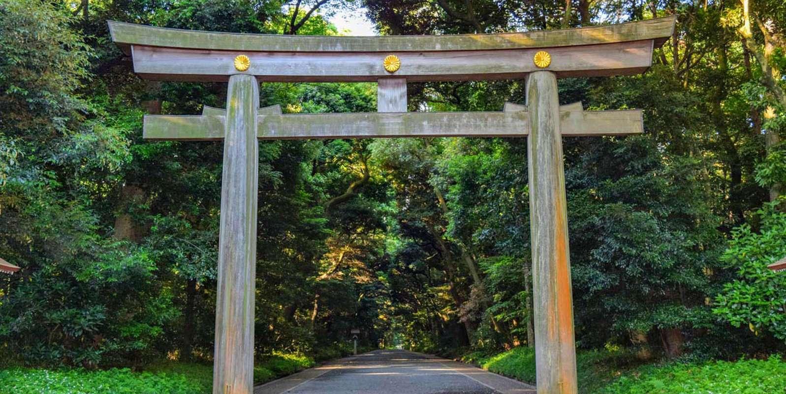 Meiji Shrine in Tokyo   Tanpopo Studio